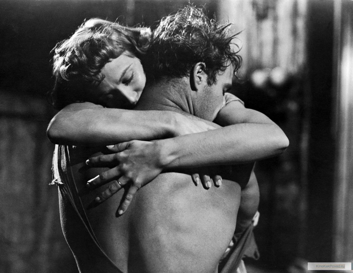 «Трамвай Желание» - «A Streetcar Named Desire»  (реж. Элиа Казан, 1951) - Марлон Брандо, Ким Хантер - фильм (фото, кадр)