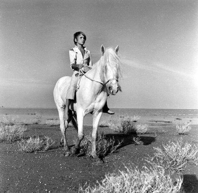«Белая грива: Дикая лошадь» - «Crin blanc: Le cheval sauvage»  (реж. Альбер Ламорис, 1953) - фильм (фото, кадр)
