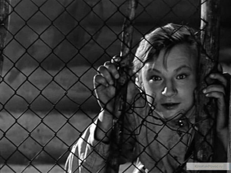 «Начальник Чукотки» (реж. Виталий Мельников, в гл.р. Михаил Кононов, 1966) - фильм (фото, кадр)